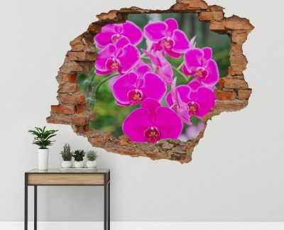 garden-of-pink-orchids-purple