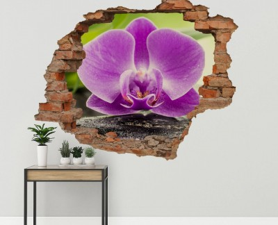 zen-stones-and-orchid-purple