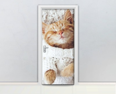 sleeping-cat-cute-pet-white-lovable-love